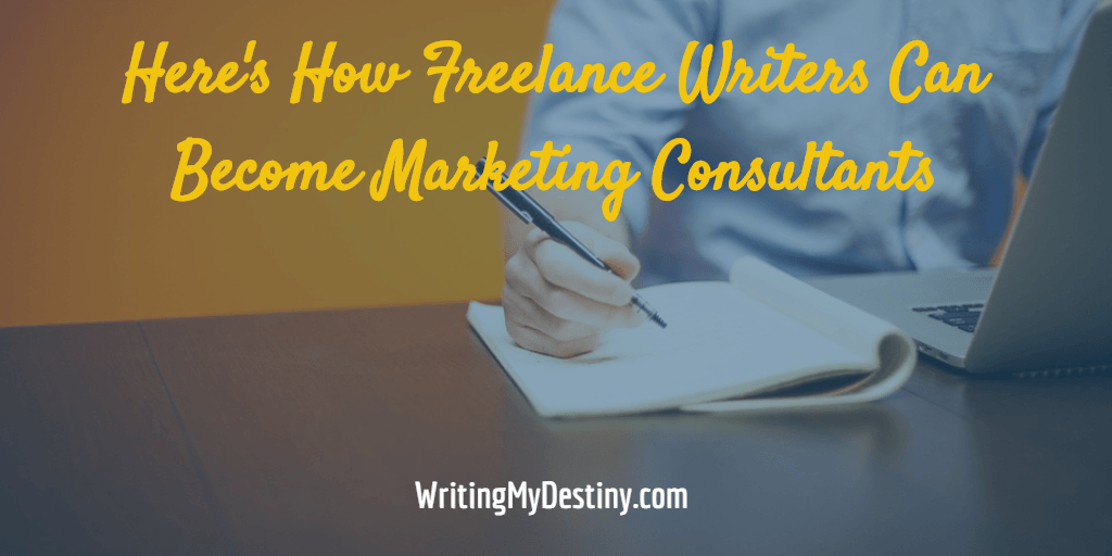 how to become a marketing consultant